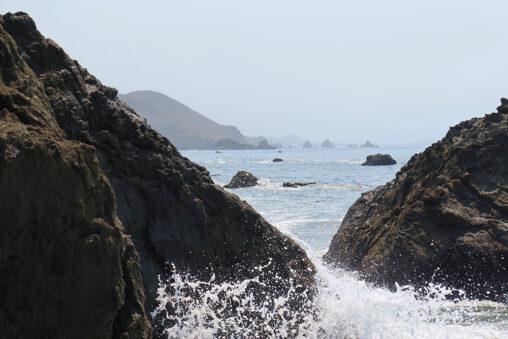 Pinnacle Gulch Trail, Bodega Bay, California